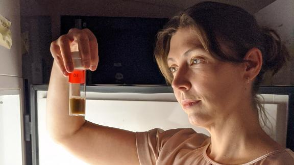 At a lab incubator, neuroscientist Sofia Axelrod examines fruit fly strains, which are kept in precisely defined light/dark cycles to entrain their circadian rhythm.